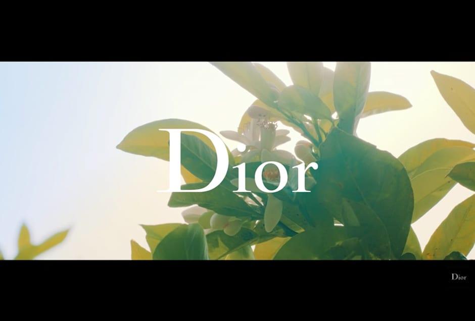 Dior J'adore Eau De Toilette