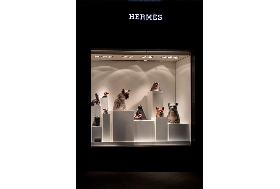 HERMES03