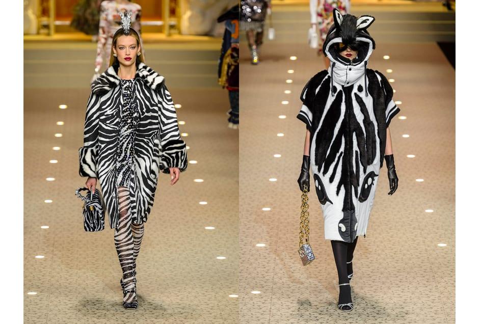 ANIMAL_Dolce&Gabbana