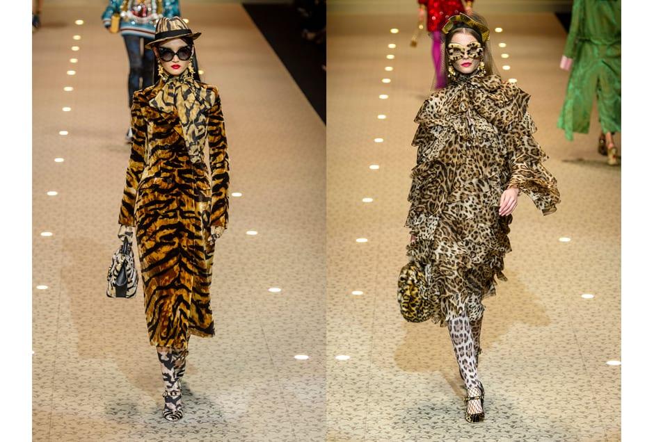 ANIMAL_Dolce&Gabbana2
