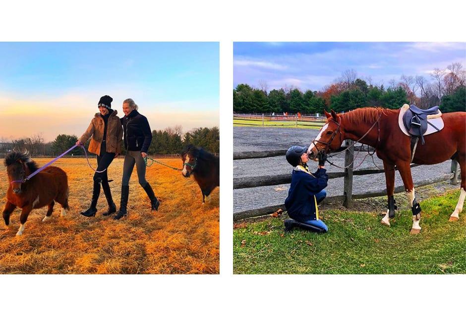 HORSES_bellahadid