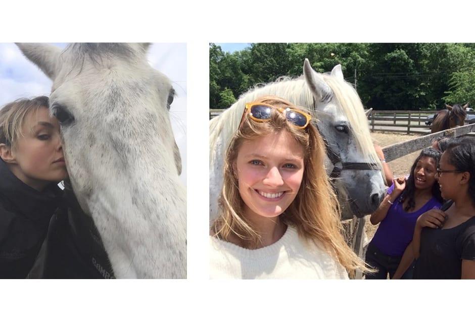 HORSES_ediebcampbell_constancejablonski