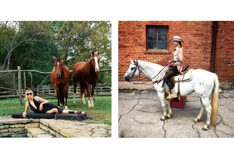 HORSES_ediebcampbell_josephineskriver