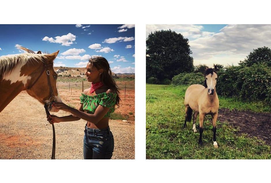 HORSES_jastookes_doutzen