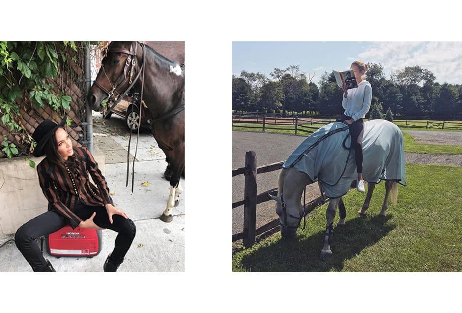 HORSES_joansmalls_gigihadid