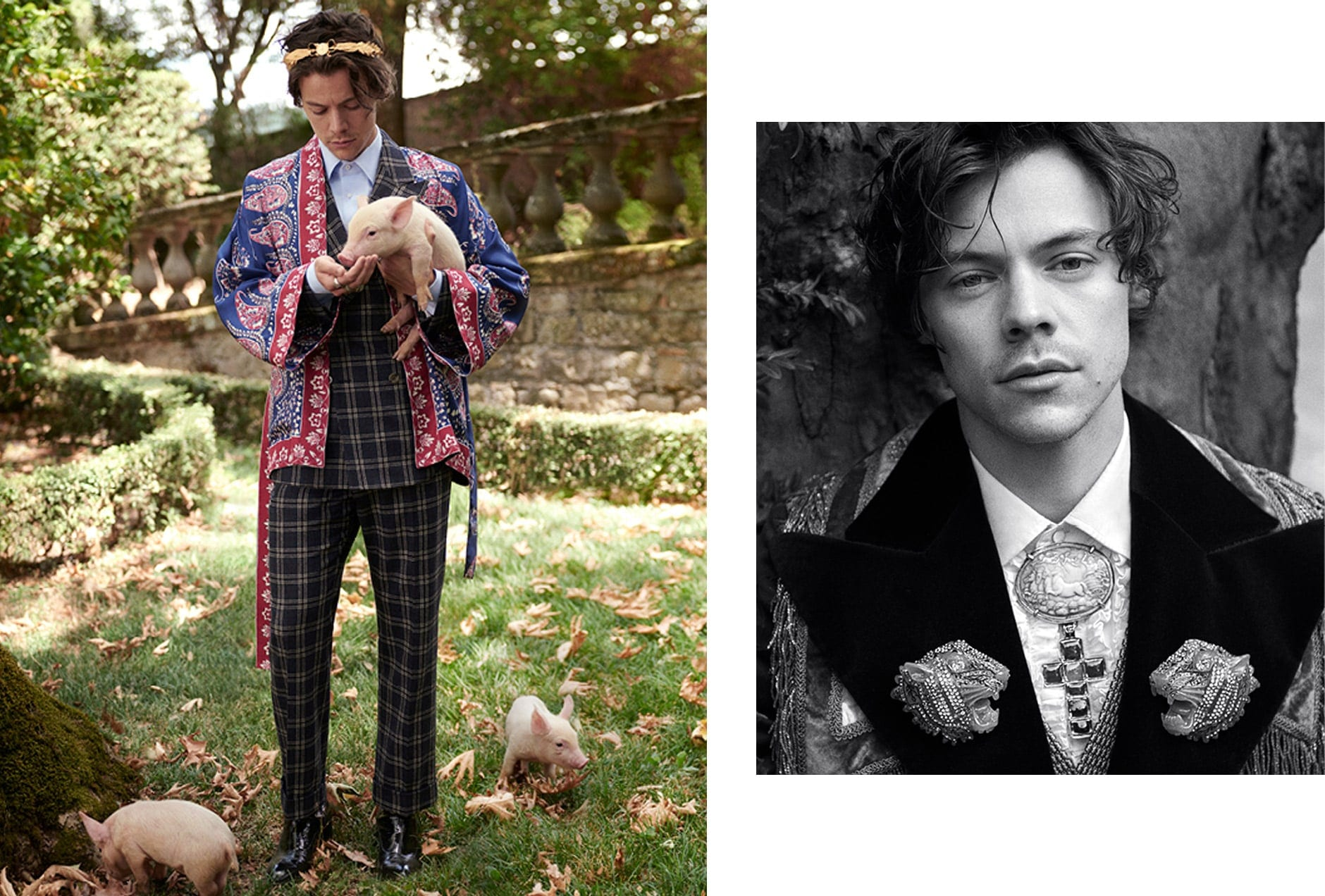 MALE-MUSES-HARRY2-min