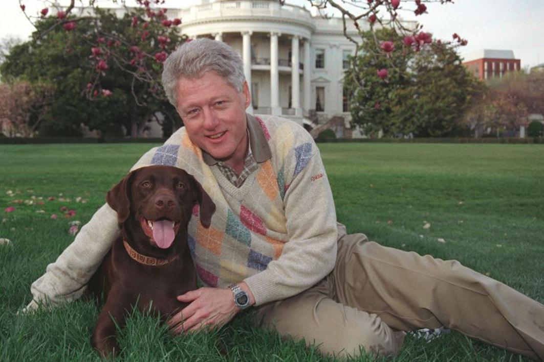 bill clinton dog